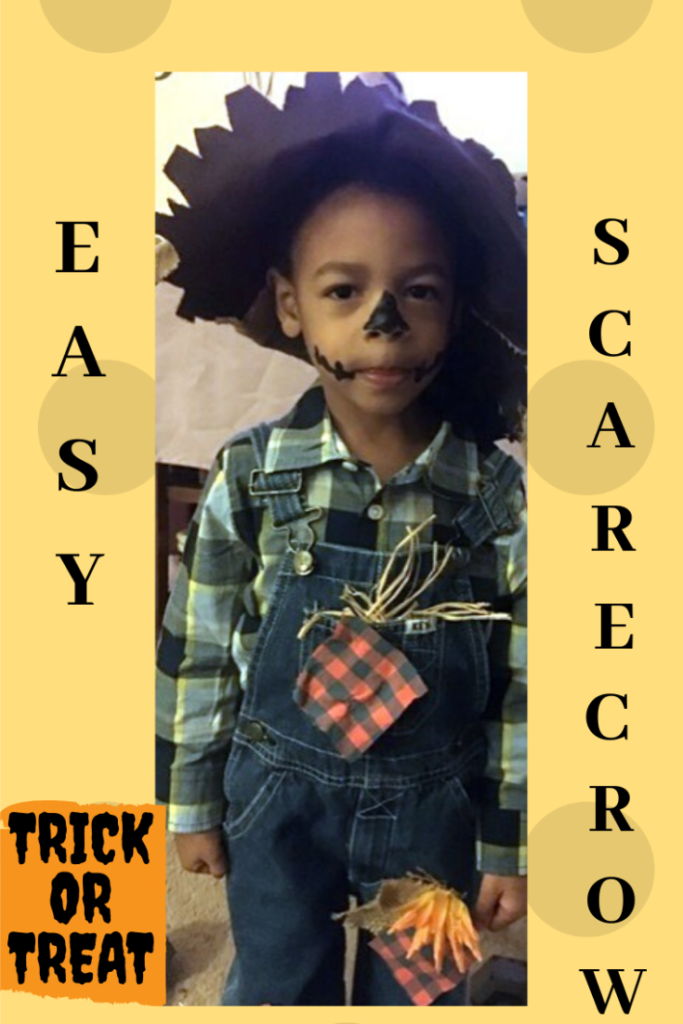 The easiest scarecrow costume you'll make. Only a few materials you already have at home will be needed.